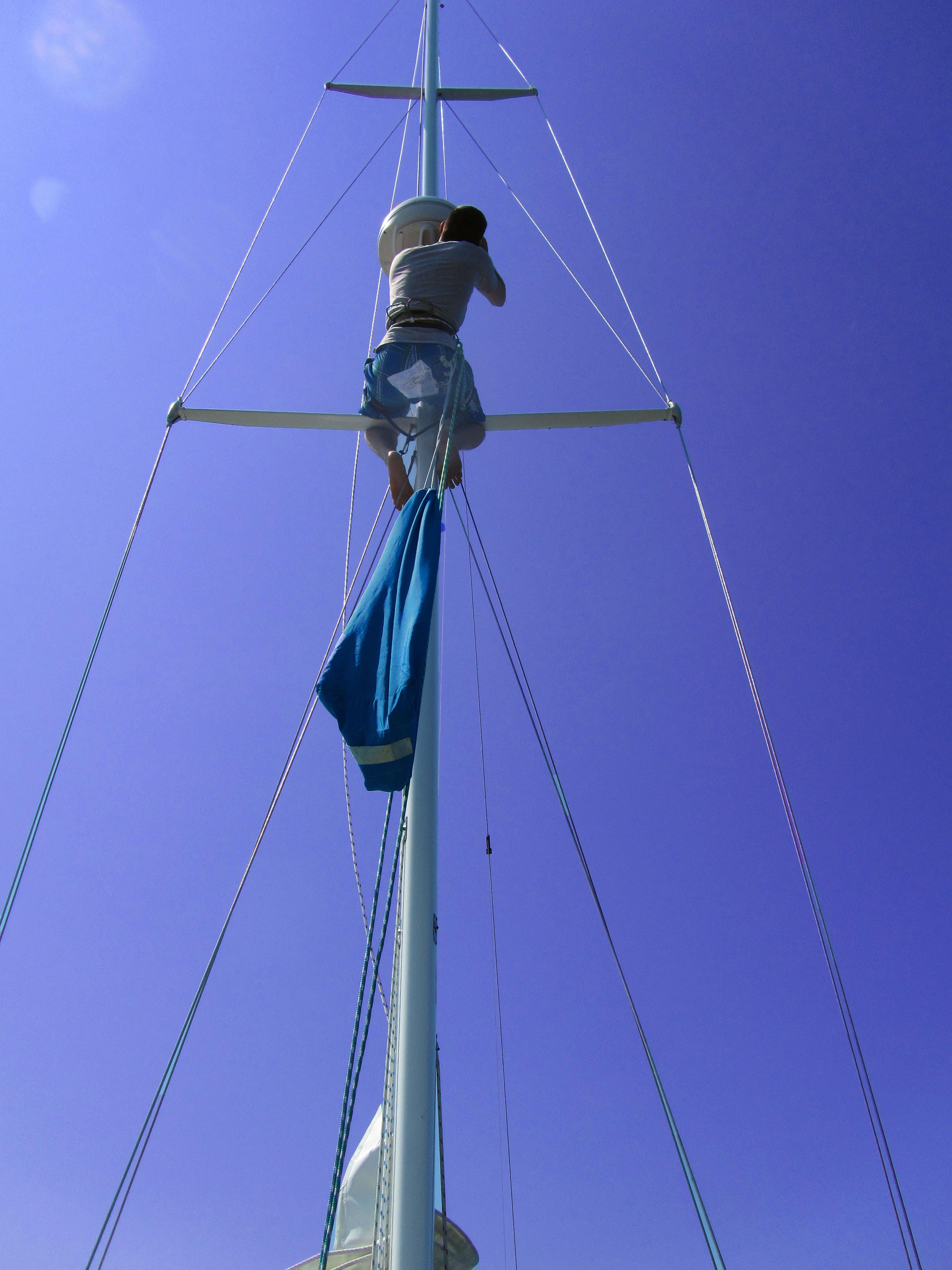 mast back 1