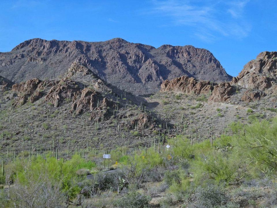 Tucson Mt Park 2