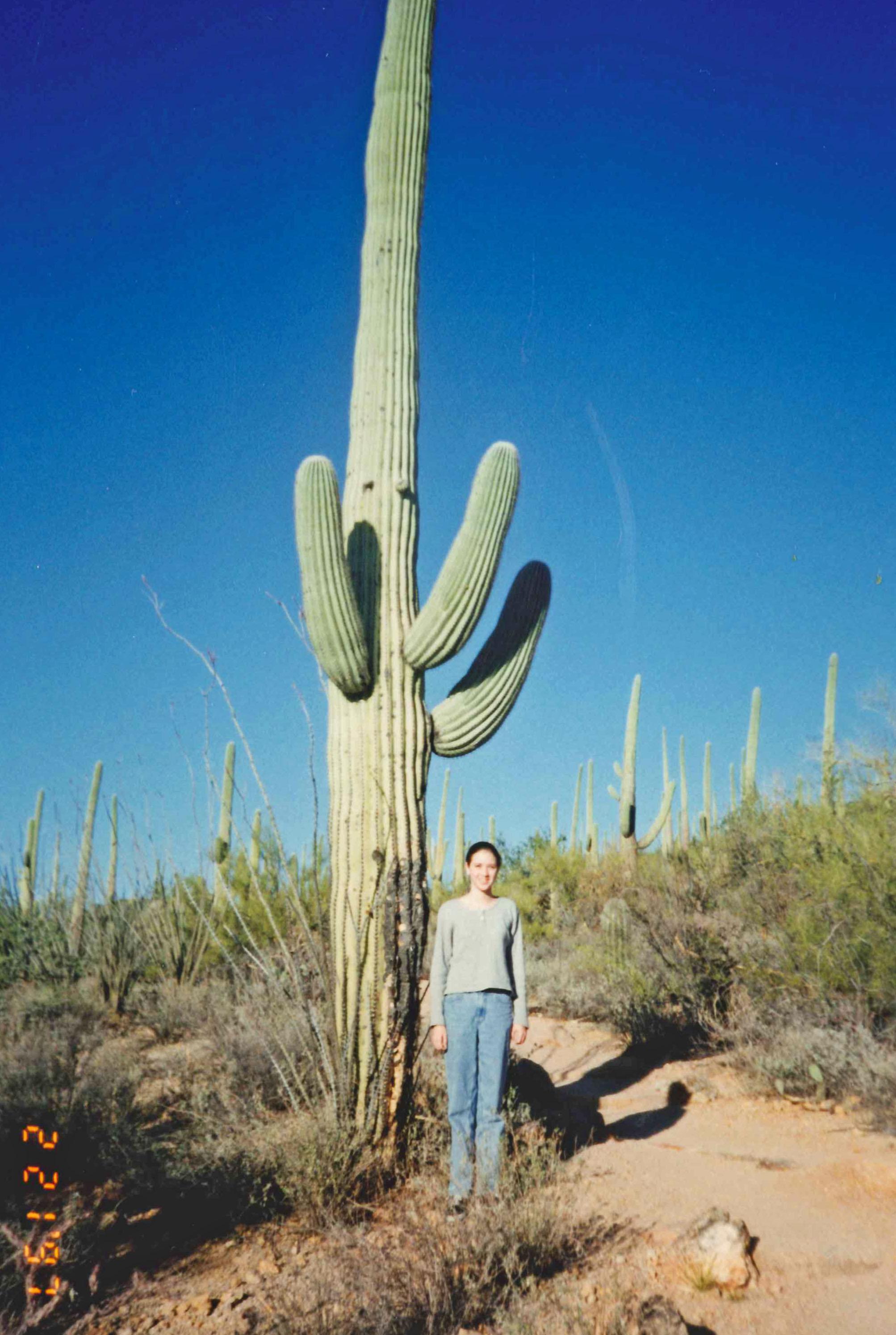 Tucson Mt Park '97 2