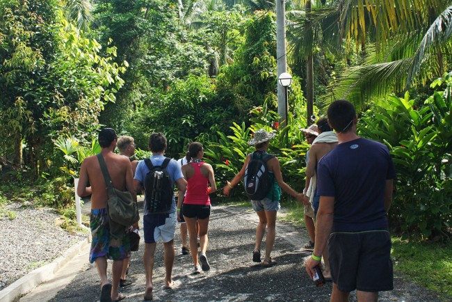hiking trails Reach Falls (4)