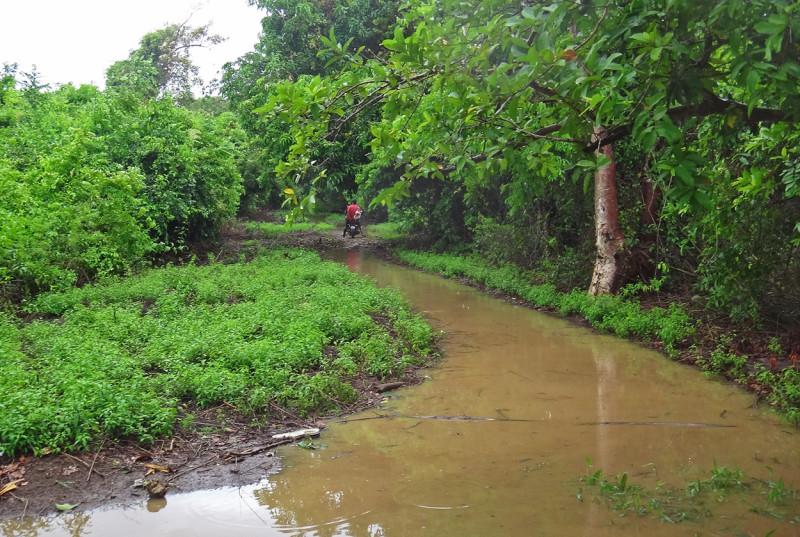 Trail to Pumpkin Hill Utila