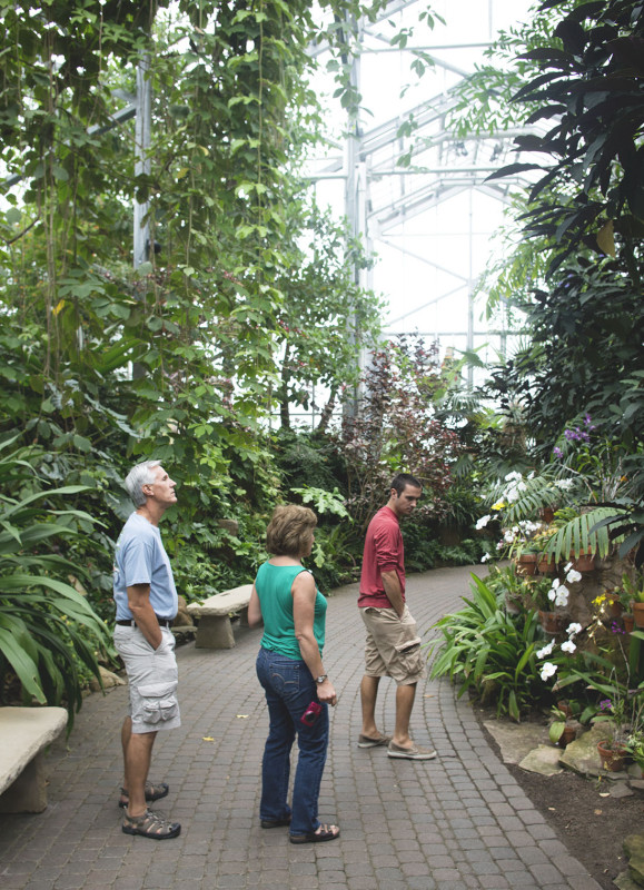FMG Tropical Conservatory 3