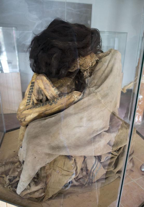 Pre-Incan Mummy