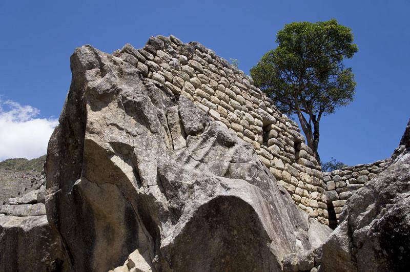 Condor  Machu Picchu