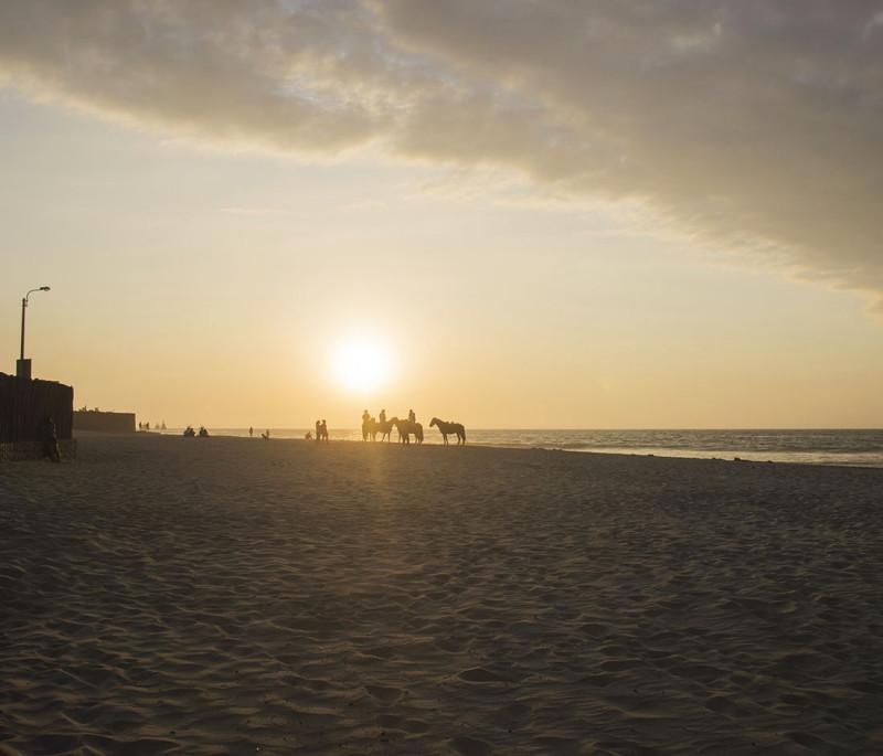 horses on beach, Mancora Peru