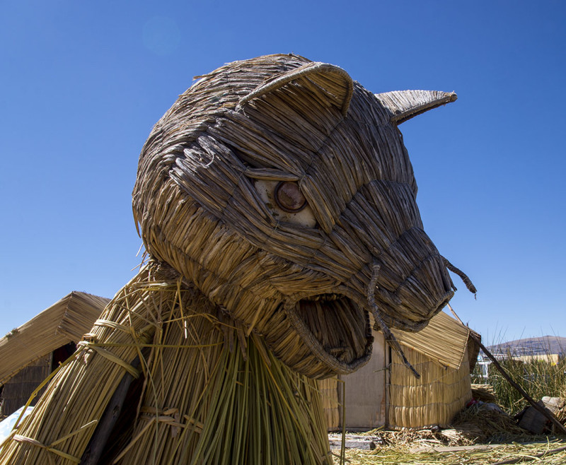 reed mountain cat Los Uros