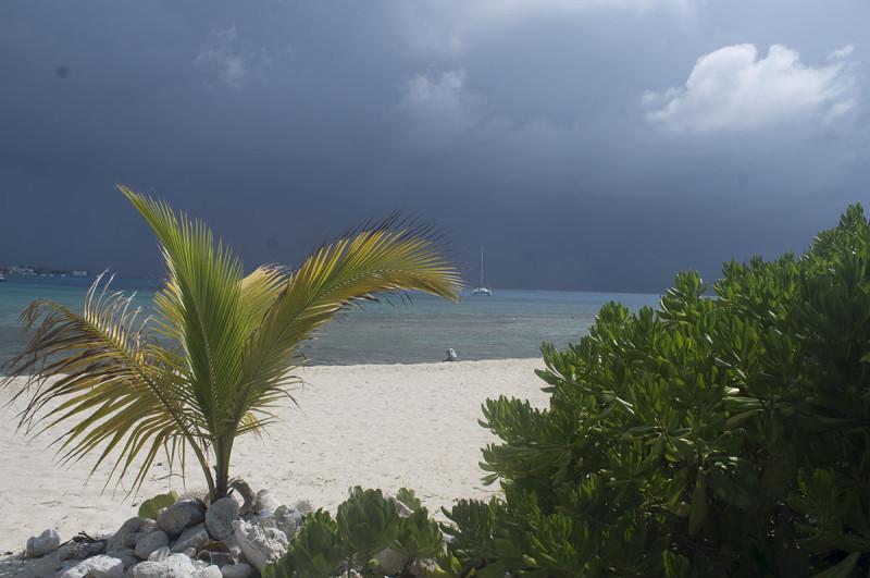 Cayman SOOC