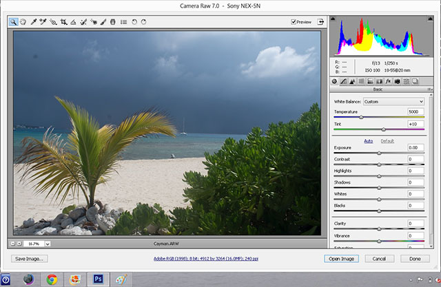 Cayman beginning histogram