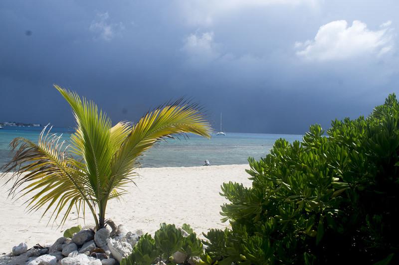 Cayman edit 2
