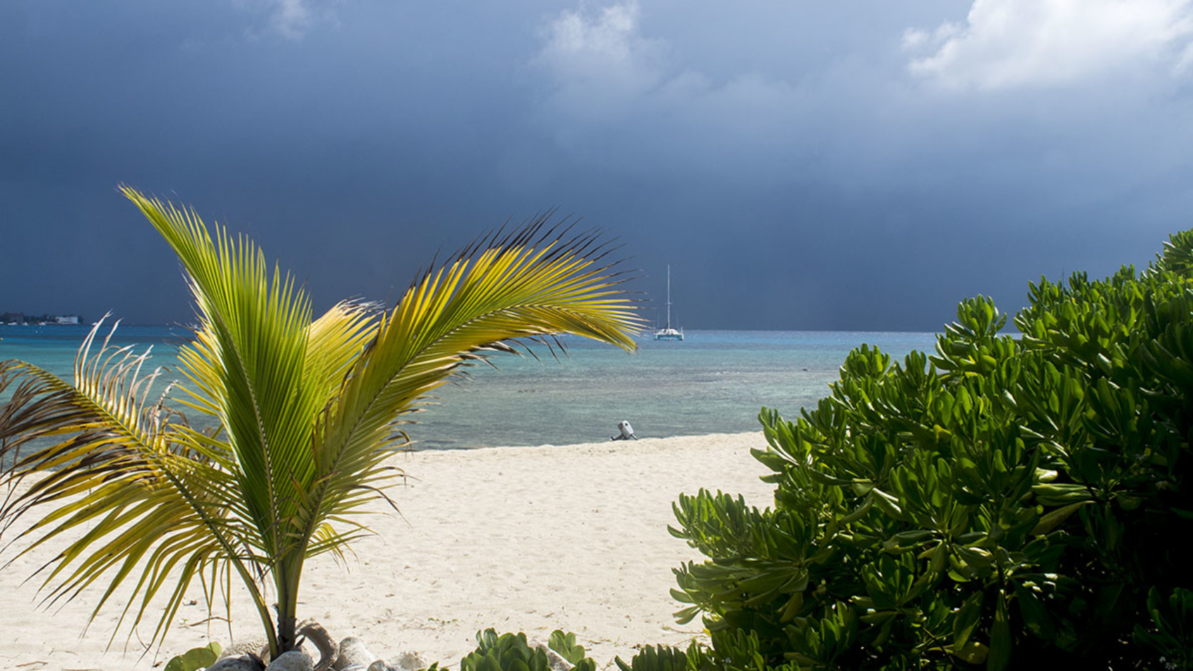 Cayman edit 4