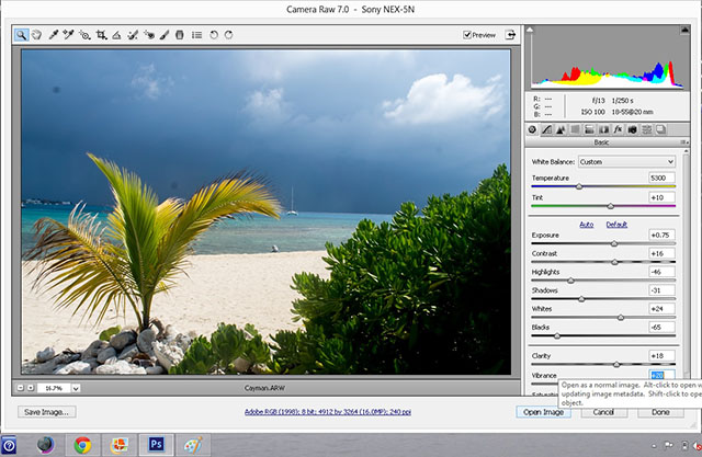 Cayman end histogram