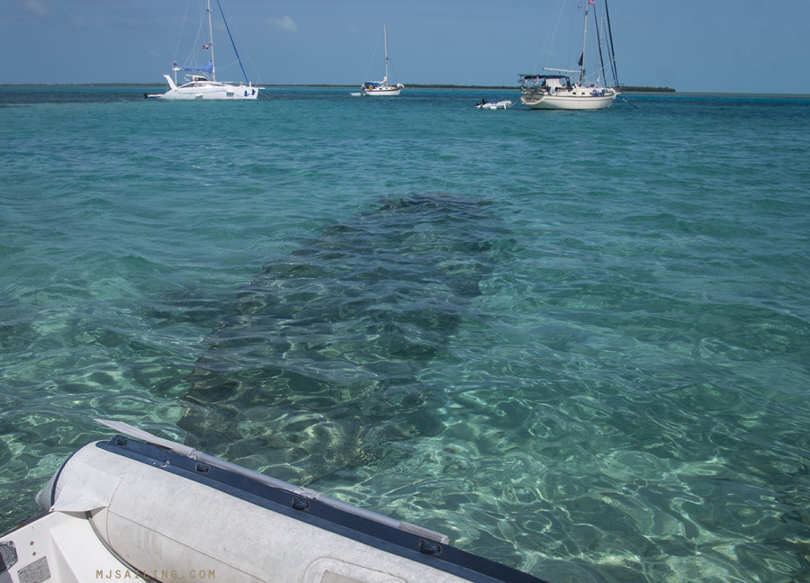 dinghy dock in Bimini