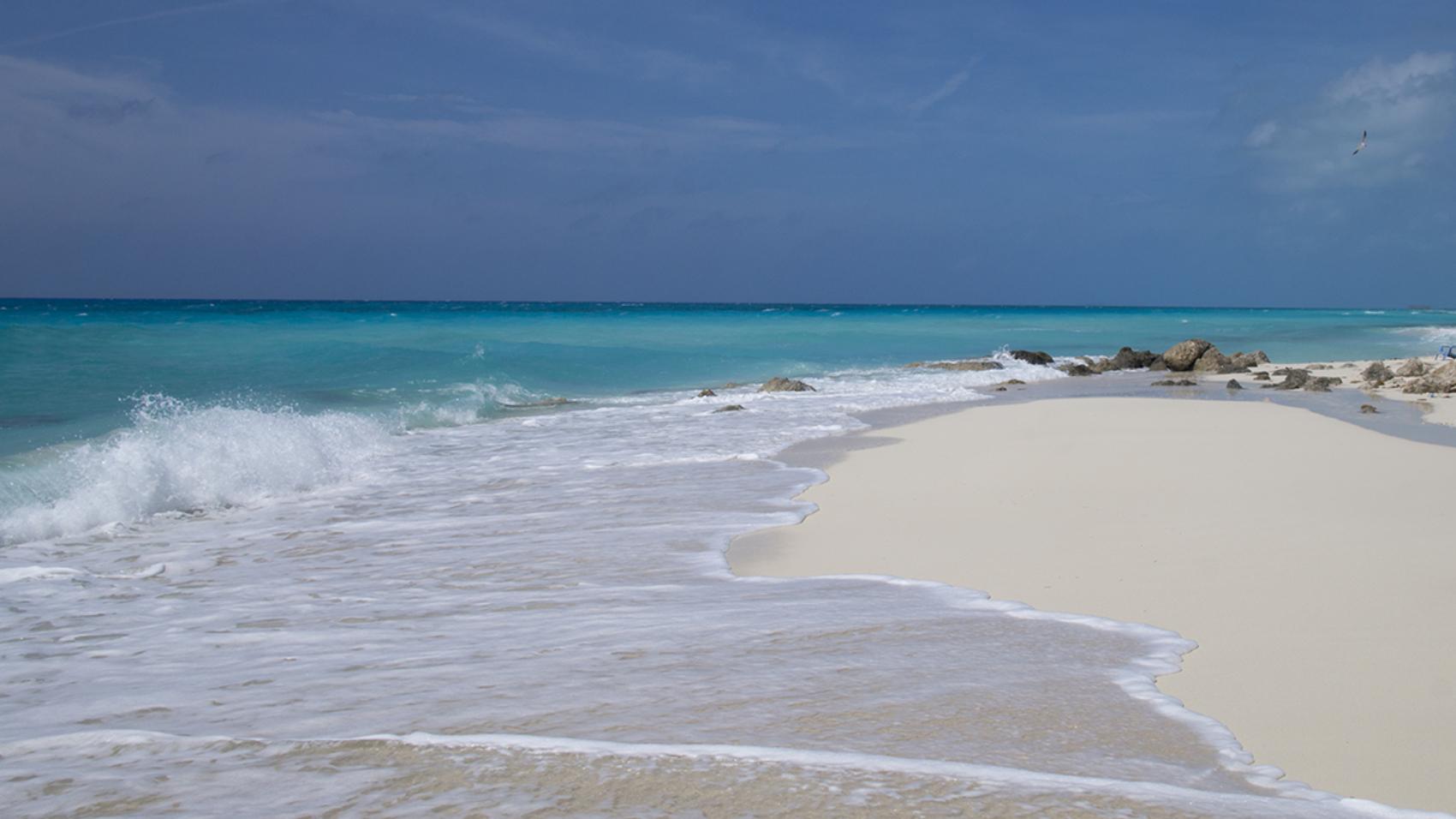 beach at Bimini