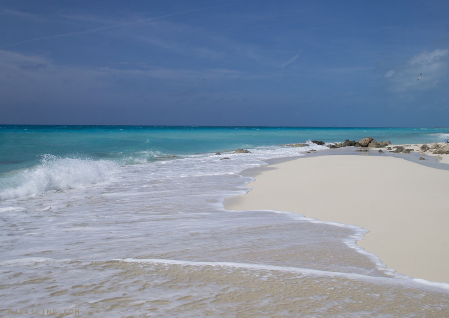 beach at Bimini