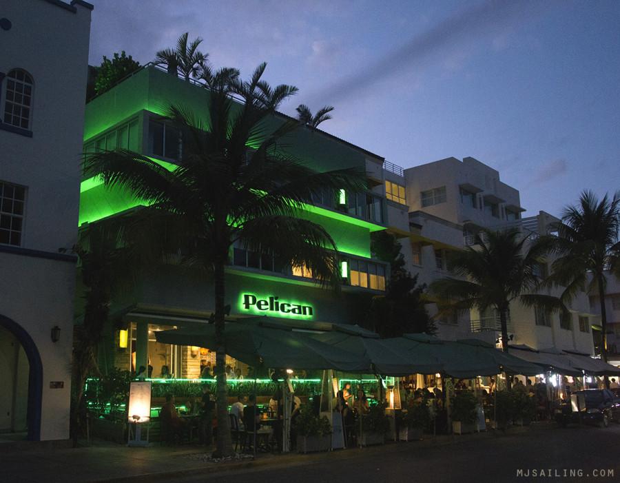 South Beach at night - Pelican