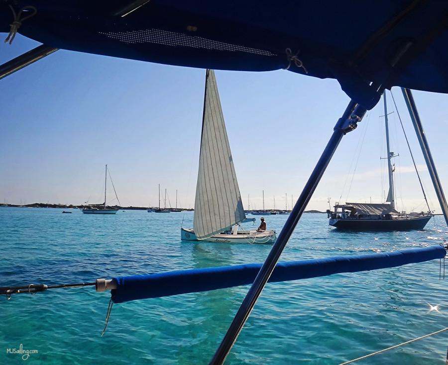 regatta passing through Kidd's Cove