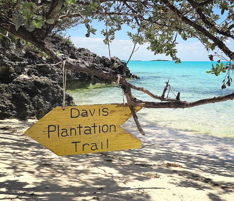 Davis Plantation Trail marker