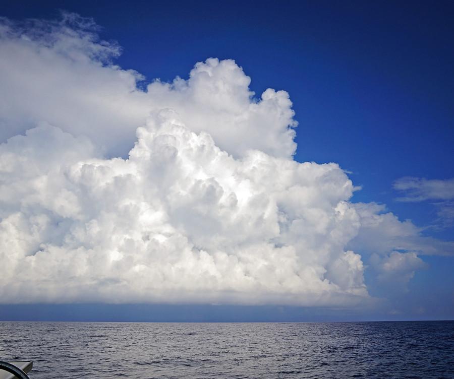 shelf cloud forming
