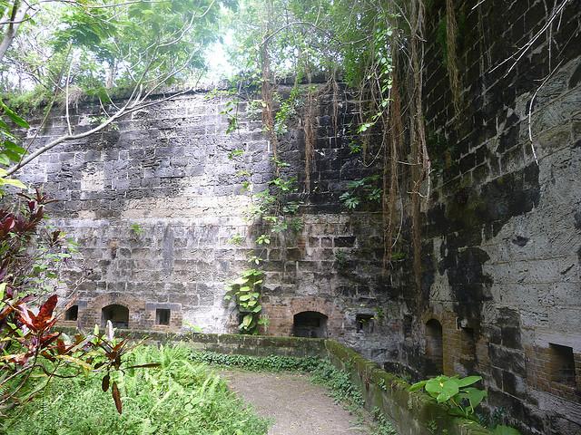 fort-hamilton moat