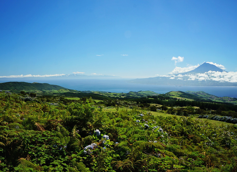 overlooking Pico, Azores