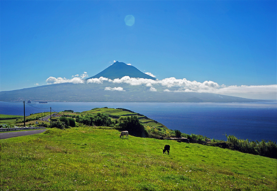 Grassy fields and Pico in the distance.  Azores