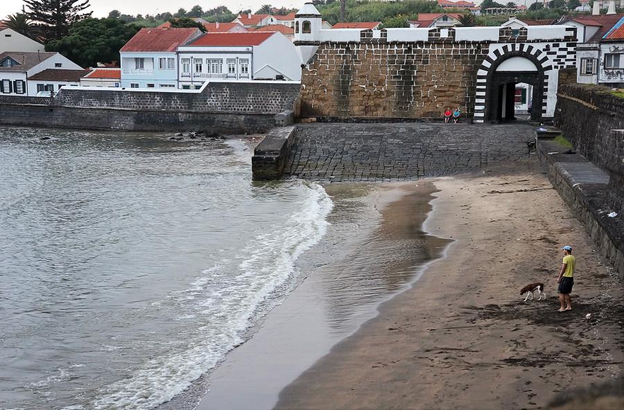 dog on beach, Porto Pim, Horta
