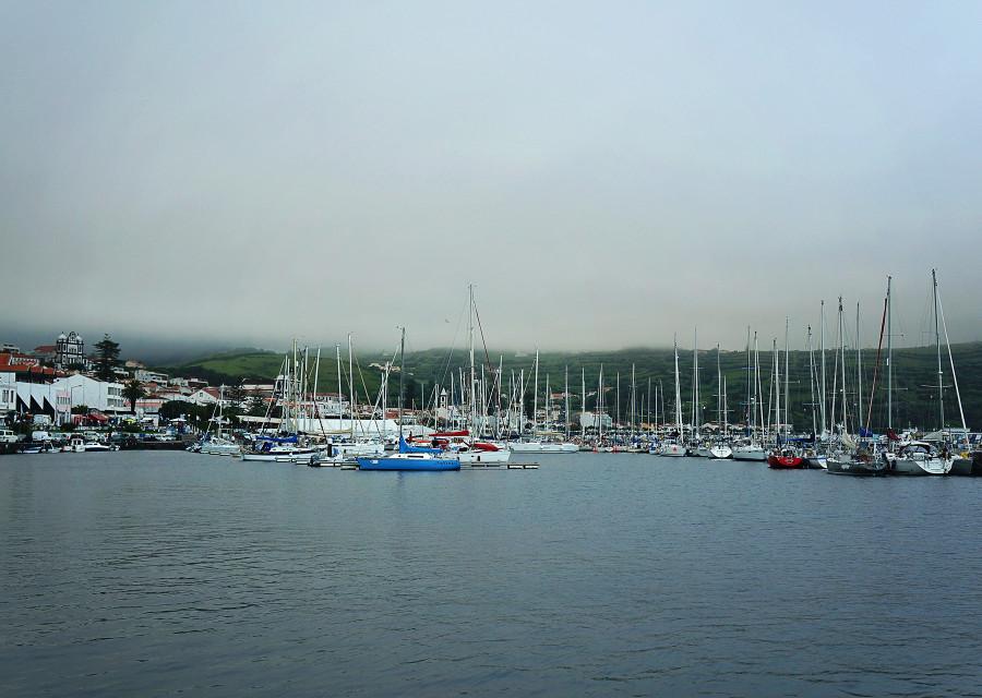 Horta Harbor, Azores