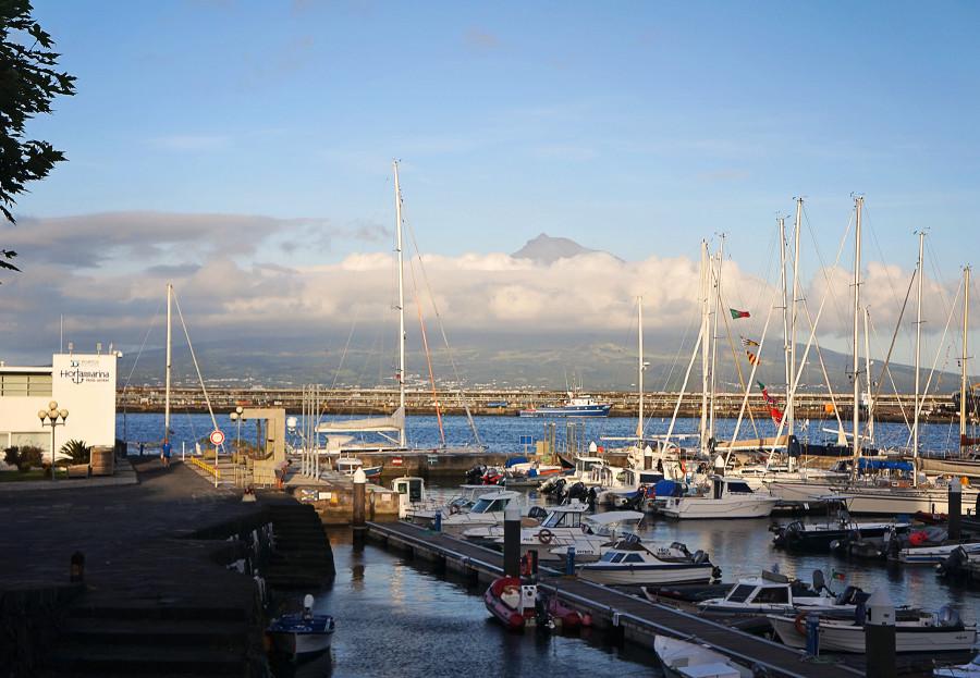 Horta marina, Azores
