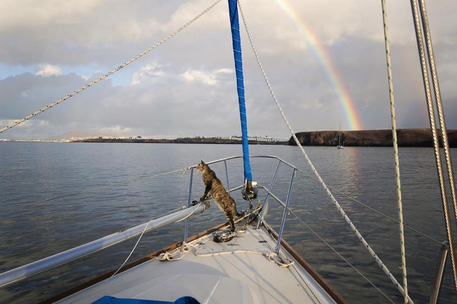 Georgie & rainbow