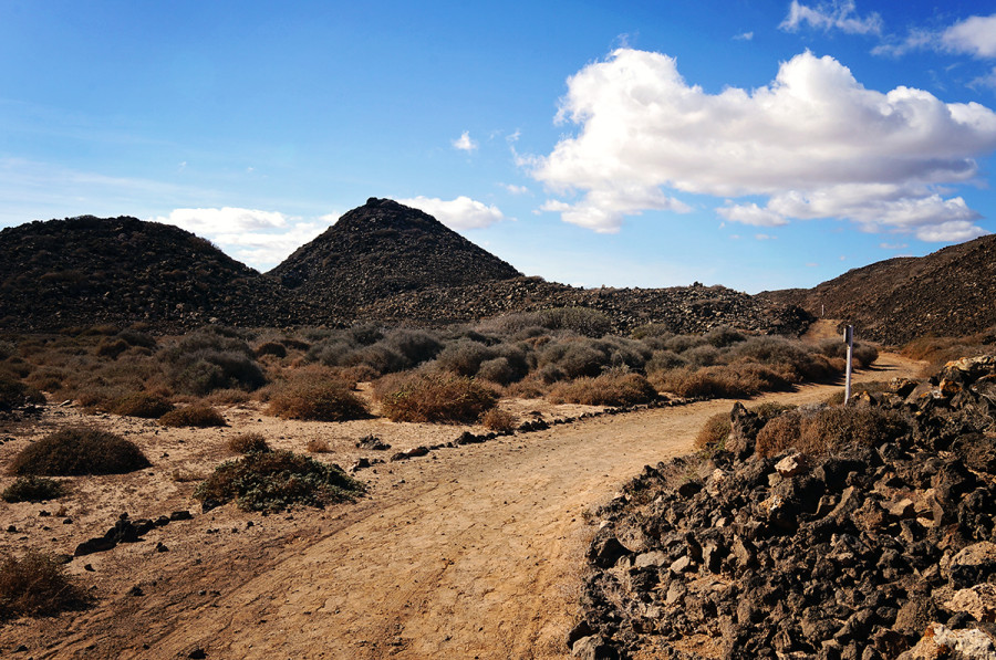 trails at Isla Los Lobos