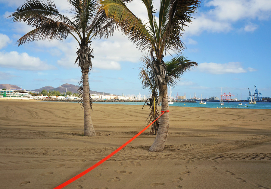 Slacklining Las Palmas de Gran Canaria
