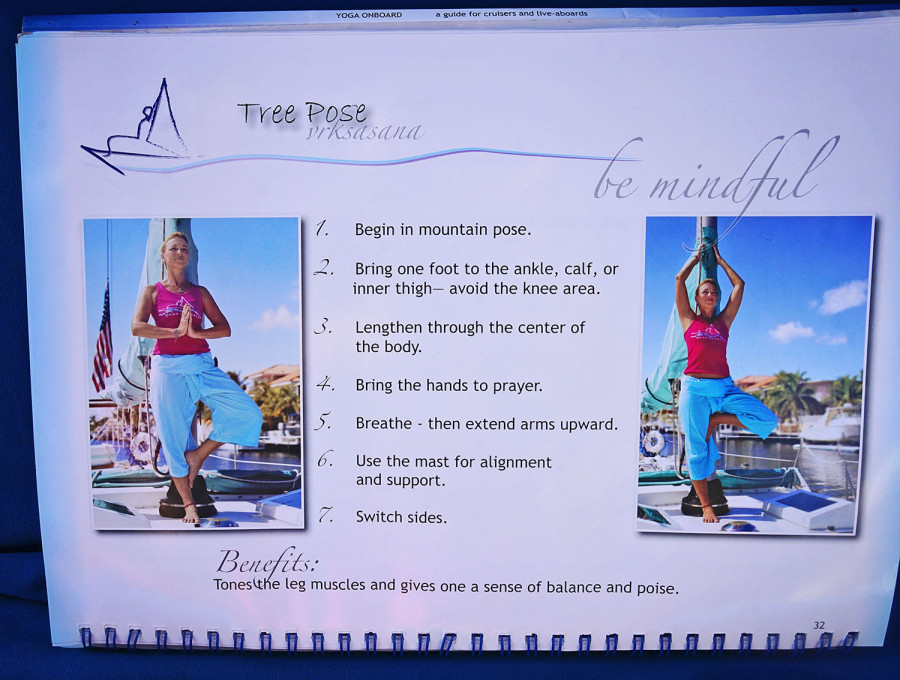 yoga onboard tree pose