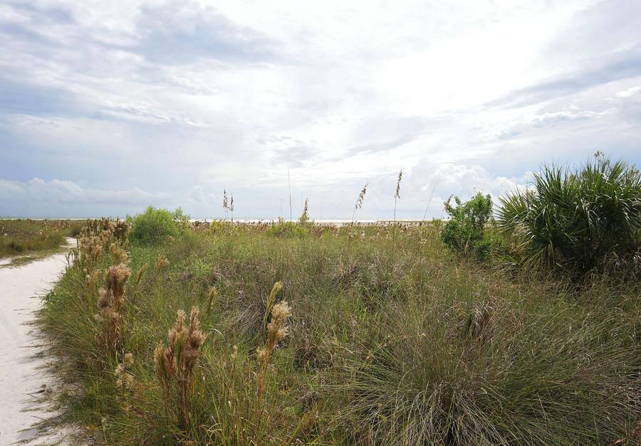 Trail head Siesta Beach