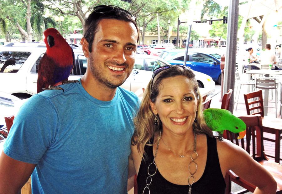 Matt & Melody parrots 1